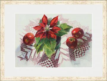 Apples & Poinsettia - Giclee Print